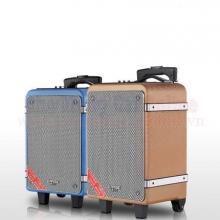 Loa vali kéo dạy học V6 1 microphone